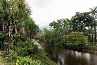 川背景.jpg